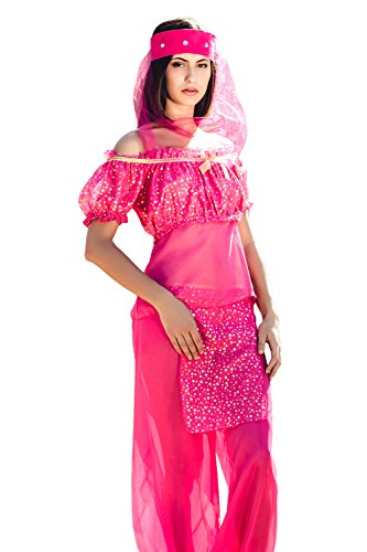 Adult Women Belly Dancer Halloween Costume Arabian Nights Dress Up & Role Play (Standard) (Cheap Costume Ideas Halloween)