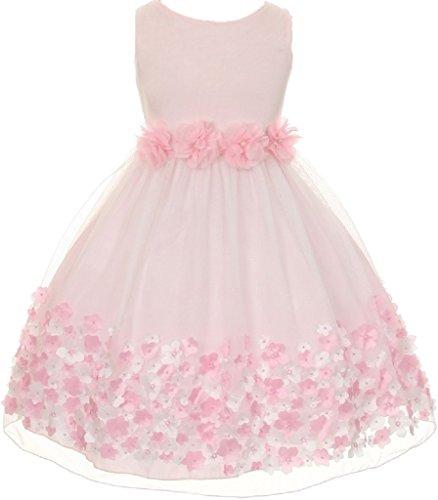Dreamer P Little Baby Girls Sleeveless 3D Mesh Flower Special Occasion Easter Summer Flower Girl Dress Pink L 18M