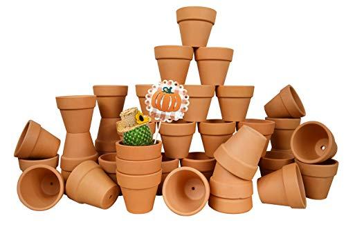 Mini Flower Pots Bulk (My Urban Crafts 40 Pcs Small Mini Clay Pots 2.1 inch Mini Terracotta Pots Clay Ceramic Pottery Planter Cactus Flower Pots Succulent Nursery Pot Great for Indoor/Outdoor Plants, Crafts, Wedding)