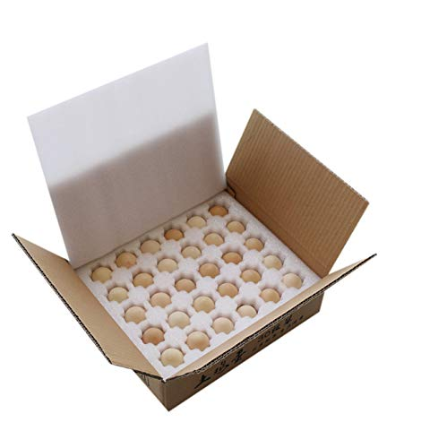 Zzooi EPE Shockproof Egg Holder Pearl Wool Egg Tray PE Foam Egg Storage Container Egg Transportation Storage -