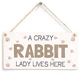 A Crazy Rabbit Lady Lives Here – Super Cute Home Accessory Novelty Gift Sign