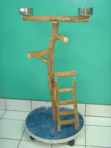 Large Playgym with Ladder (23''x22''x3/4'' plywood/formica base)