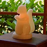 The Nimble Squirrel Flameless Wax Candle with Timer by Candle Impressions
