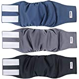 Wegreeco Washable Male Dog Belly Band (New Pattern)- Pack of 3 - Washable Male Dog Belly Wrap, Dog Diapers Male (Large, Charming)