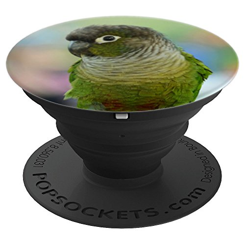 Green Cheeked Conure Bird Design - PopSockets Grip and Stand for Phones and - Conure Green Bird Cheeked