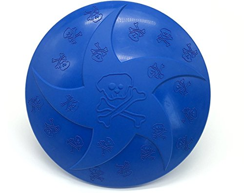 Frisbee Pet Flying Disc Dog Toy Rough Play Outdoor (Best Generic Frisbees)