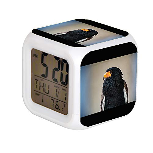 (JHSIT 7 Color Change LED Digital Alarm Clock with Date Alarm Thermometer Desktop Table Cube Alarm Clock Child Home Selective Focus Photo of Bateleur Eagle)