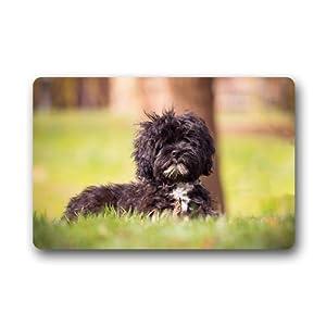 CustomLittleHome Affenpinscher Puppy Custom Doormats Rug Non Slip Mats Indoor/Outdoor/Bathroom/Decor Area Rug(23.6x15.7 inch) 3