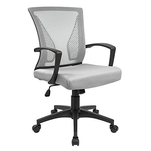 Furmax Office Chair Mid Back Swivel Lumbar Support Desk Chair,Ergonomic Computer Mesh Chair Armrest (Gray) by Furmax