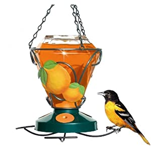 Perky-Pet 750 Deluxe Hand Painted Oriole Feeder, 24-Ounce Capacity 15