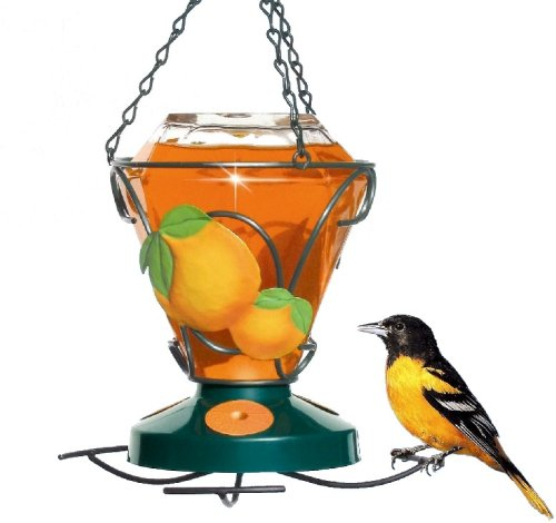 (Perky-Pet 750 Deluxe Hand Painted Oriole Feeder, 24-Ounce Capacity)