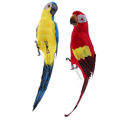 2Pcs Large Artificial Parrot Bird Realistic Home Decor Budgie Taxidermy Set]()