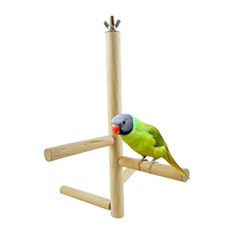 368° inspiration Juguete pájaro Escalera Rotativa de Cuatro etapas ...
