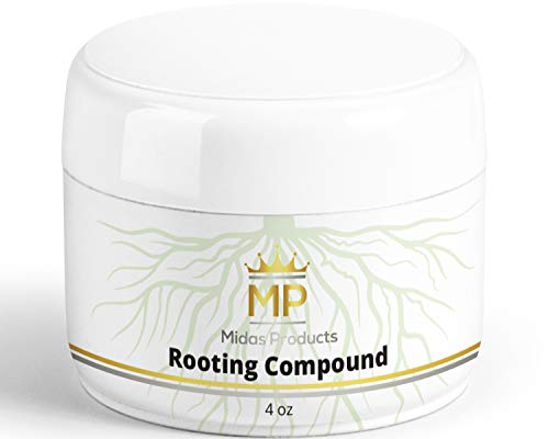 Rooting Gel - IBA Rooting Hormone- Ideal Cloning Gel for Strong Clones - The Key to Plant cloning - Midas Products Rooting Gel Hormone for cuttings 4oz - for Professional and Home Based Growers