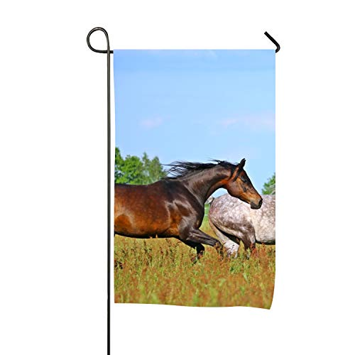 BaiGrid Garden Flags 28 x 40 inch Outdoor Indoor Decorative Wonderful Horse Yard Flag ()