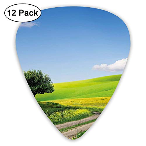 Guitar Picks 12-Pack,Rural Country Scenery With Floral Grass Field Tree Idyllic Landscape (Grass Floral Damask)