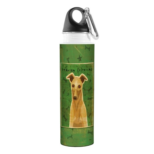 Tree-Free Greetings VB48075 John W. Golden Artful Traveler Stainless Steel Water Bottle, 18-Ounce, Fawn Italian Greyhound ()