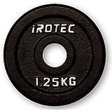 IROTEC(アイロテック) アイアンプレート 1.25KG / ダンベル バーベル兼用プレート