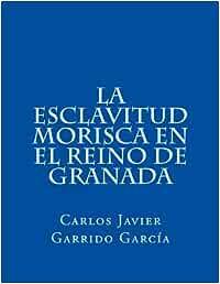 La esclavitud morisca en el Reino de Granada: Guadix en el