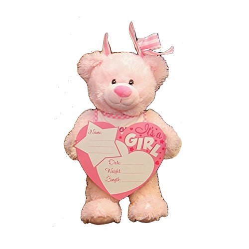 14'' PLUSH BIRTH ANNOUNCEMENT (PINK) (Announcement Birth Pink)