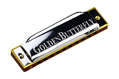Harmonica Key of C 10 Hole 20 Tone Diatonic Harmonica C with Case for Beginner,Students, Kids Gift