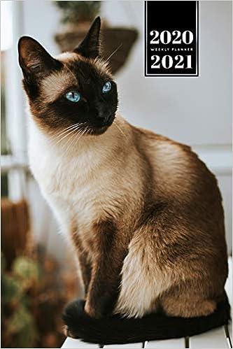 シャム 猫 子猫 シャム (ネコ) - Wikipedia