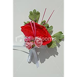 Red Anemone & Pink Roses Wedding Buttonhole with Cystal Sprays 11