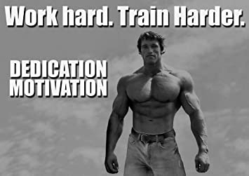 MOTIVATIONAL   Arnold Schwarzenegger   DEDICATION 17  A4   BODY BUILING    GYM   Quote