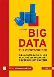 Big Data für IT-Entscheider: Riesige Datenmengen und moderne Technologien gewinnbringend nutzen