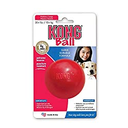 41frLliz%2B4L. SS250  - KONG Red Rubber Ball Made In The USA