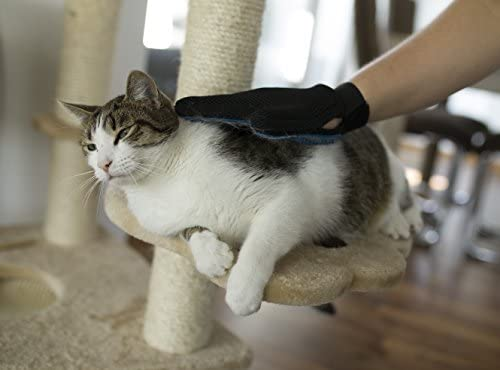 Lechelt Gant de Toilettage pour retirer le poils d'animaux avec effet de massage