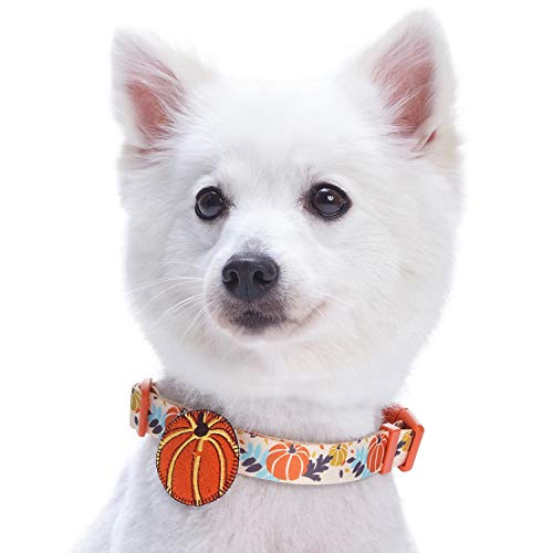 Blueberry Pet 8 Patterns Thanksgiving Fall Harvest Festival Pumpkin Designer Dog Collar with Decoration, Medium, Neck 14.5
