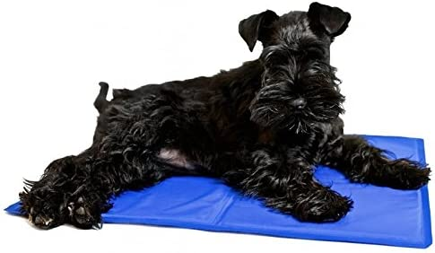 Nobleza – Alfombrilla refrescante para Mascotas Grandes. Auto refrigerante No tóxico. Ideal para para Perros, Gatos en Verano. 90 * 50 cm, Color Azul