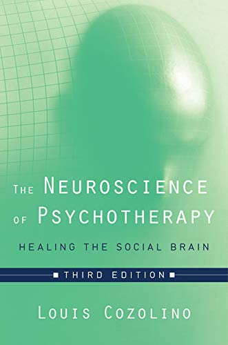 The Neuroscience of Psychotherapy: Healing the Social Brain (Third Edition)  (Norton Series on Interpersonal Neurobiolog