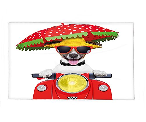 Interestlee Fleece Throw Blanket Animal Dog with a Hat and Sunglasses Driving Motorcycle Under An Umbrella Funny Holiday Image - Spotter Sunglasses