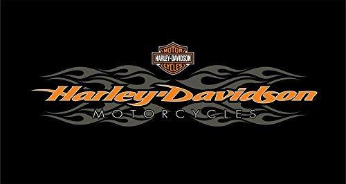 8 Harley-Davidson radical flames billiard cloth