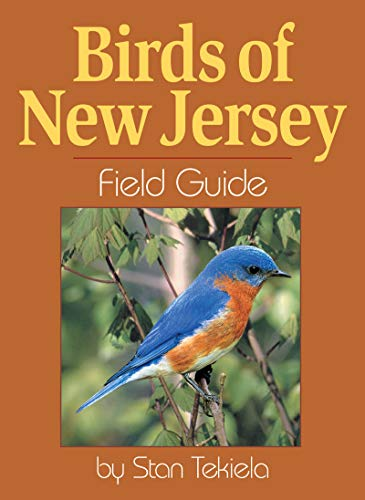 Birds of New Jersey Field