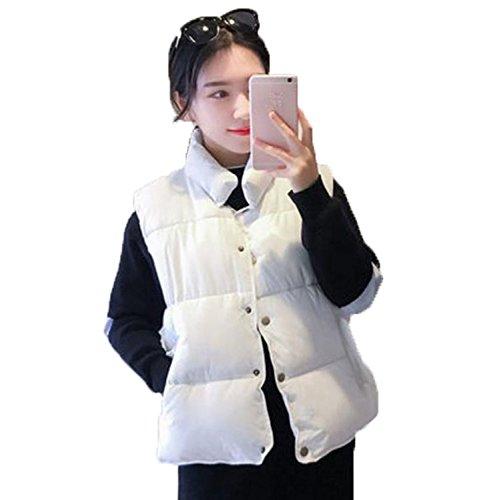 作家歯痛建てるアイビエツ(AIBIETU)レディース 中綿 ベスト ノースリーブ ジャケット ファッション 防寒 中綿 無地 通勤 ショート丈 中綿 ベスト