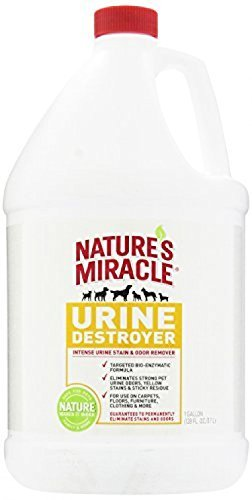 Odor & Stain Removal Nature's Miracle Pet Urine Destroyer, 1-Gallon by Nature's Miracle