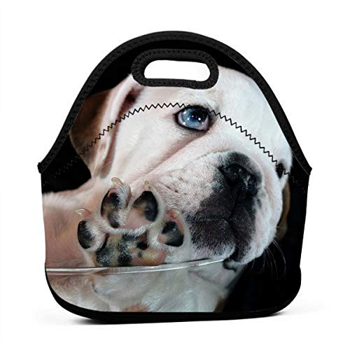 (Miniisoul Portable Bento Bag Cute Pet Bulldog Art Reusable Lunch Bag Waterproof Picnic Tote Insulated Cooler Zipper Box)