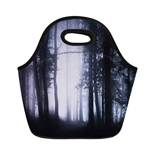 Semtomn Lunch Tote Bag Dark Forest Landscape Woodland at Night Spooky Halloween Atmosphere Reusable Neoprene Insulated Thermal Outdoor Picnic Lunchbox for Men Women ()