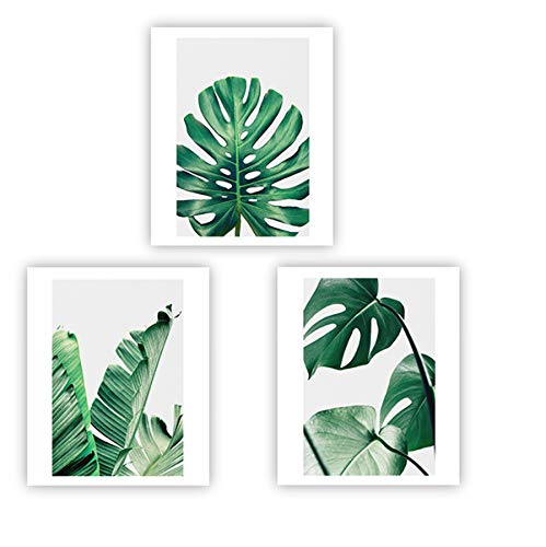 Banana Palm Wall Art - Barri Design Home Wall Art Décor Plants Posters Oil Paintings Posters Prints Watercolor Green Leaf Pictures Canvas Wall Art Wall Decorations 8