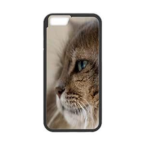 Cat Series, IPhone 6 Plus Cases, Fluffy Cat 3 Cases for IPhone 6 Plus [Black]