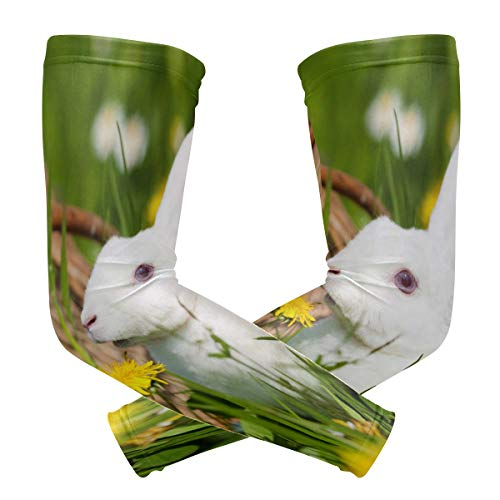 Chairs Arm Rabbit - Arm Sleeves Rabbit In The Garden Man Baseball Long Cooling Sleeves Sun UV Compression Arm Covers