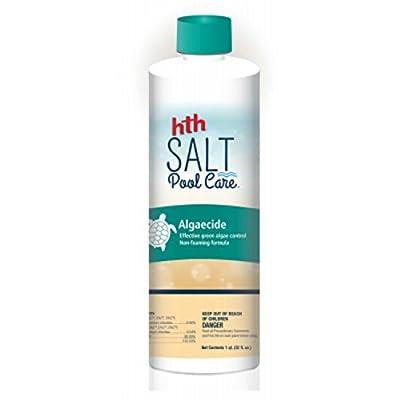 HTH 67002 Algaecide Salt Swimming Pool Cleanser, 1 qt : Garden & Outdoor