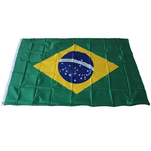 Happyear Flags of All Nations, International Flags - for Party Decorations, School Events, Cultural Studies (Brazil)