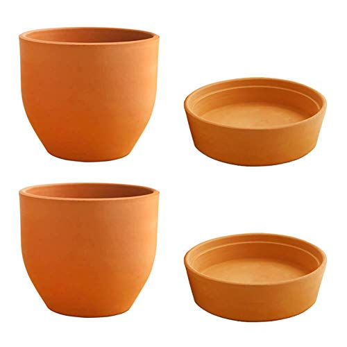 (Viapot Roma Hole Terra Cotta Planter Flower Clay Pot with Saucer, Brown, 5.5