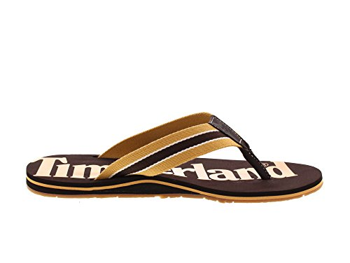 wheat Homme Marron F Wild 231 Dunes Tongs l Timberland Y0XEq