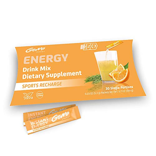 GoMo Energy® Sport Recovery Drink Mix | with Vitamin D3 + K2 + B Complex, Mineral Mix & Horsetail Extract | Sugar Free & Caffeine Free | Isotonic Energy Drink Powder Mix | Sports Recharge 30 Servings (Best Isotonic Drink Powder)