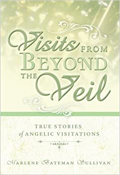 Book Visits from Beyond the Veil: True Stories of Angelic Visitations